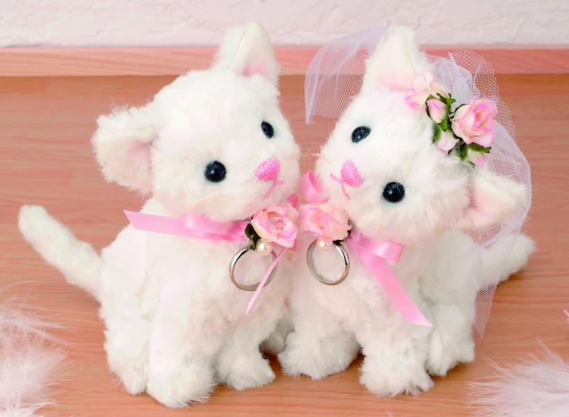 手工制作婚礼聊天套件设置棉花, 针, 微丸和线程安全套