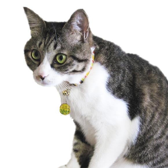 宠物·宠物用品 猫类用品 项圈·挽具 姓名牌 商品详细信息    s   m