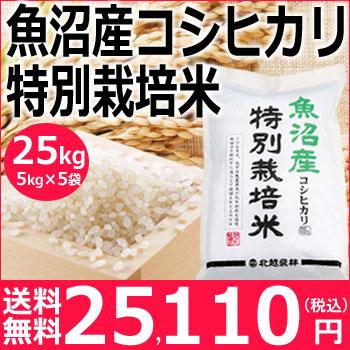 米 新米】特別栽培米 魚沼産コシヒカリ25kg(5kg×5袋)【送料