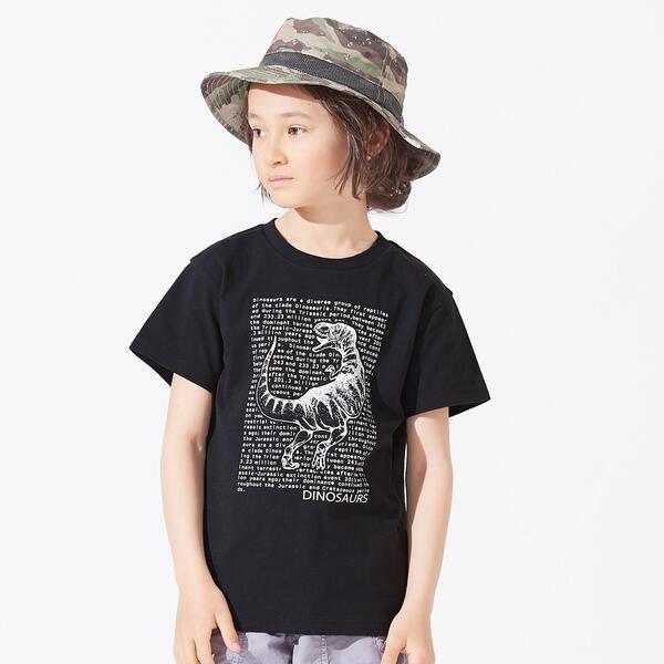 SALE - 3柄ダイナソーロゴTシャツ エフオーオンラインストア ストアー 高価値