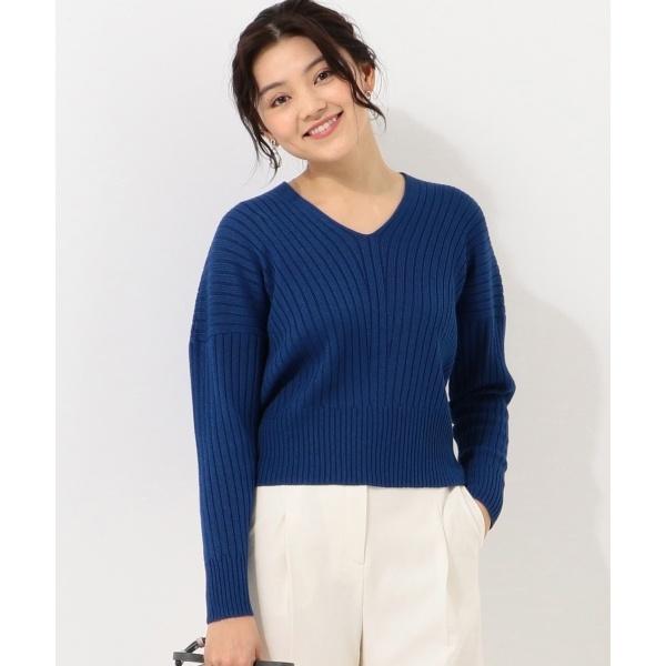 【店頭売れ筋】Siltex Cotton Vネック ニット/アイシービー L(ICB L)