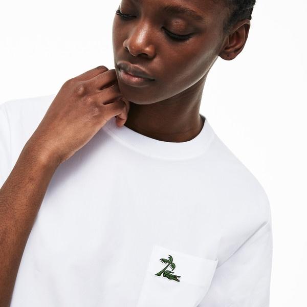 コットンポプリンクルーネックTシャツシャツ/ラコステ(LACOSTE)