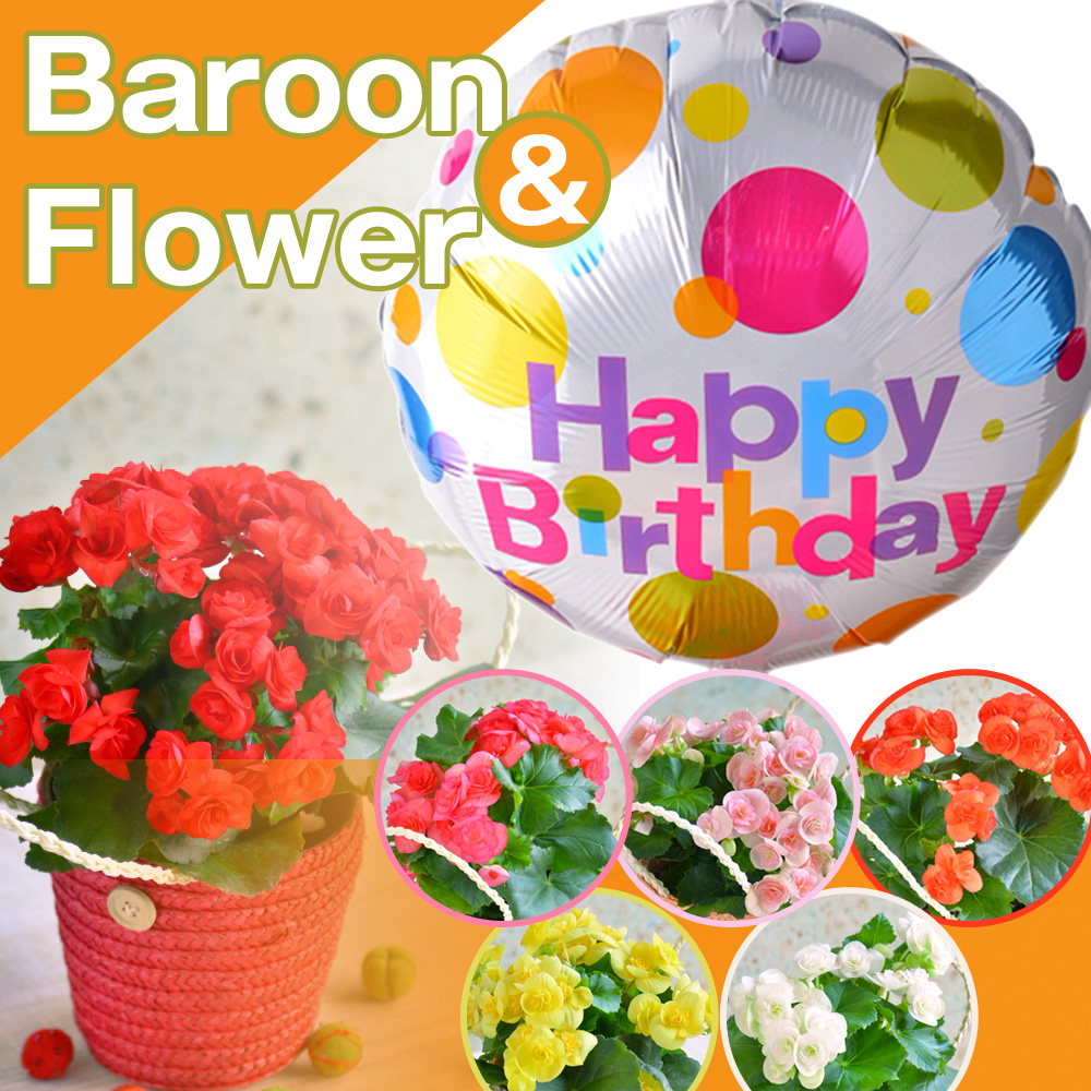 087gift Four Kinds Of Balloon Amp Flower Gift Lee Garth Color