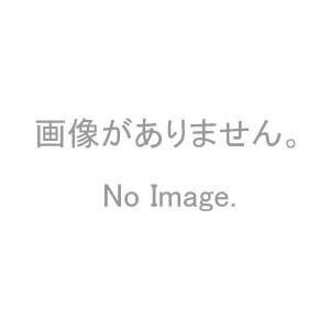 新日軽 ビル用 補助錠付クレセント CL-181 ブラック 左勝手用【メーカー取り寄せ品】