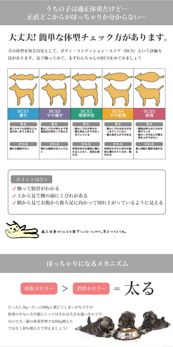 肥満 ミニライト 生後10ヵ月齢以上の体重コントロールが必要な小型犬に ロイヤルカナン 減量 ダイエット 【お得な2個セット】 8kg / 【あす楽】 ×2個 [ROYALCANIN/SHN/犬用ドライ/ドッグフード/犬/いぬ/イヌ/dog] #st50682