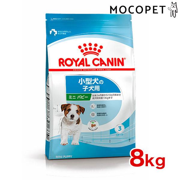 【あす楽】ロイヤルカナン ミニ ジュニア 8kg 安心の正規品 犬 /[ROYAL CANIN SHN 犬用ドライ] ドッグフード 子犬 仔犬 3182550793049 #w-113806【RCA】