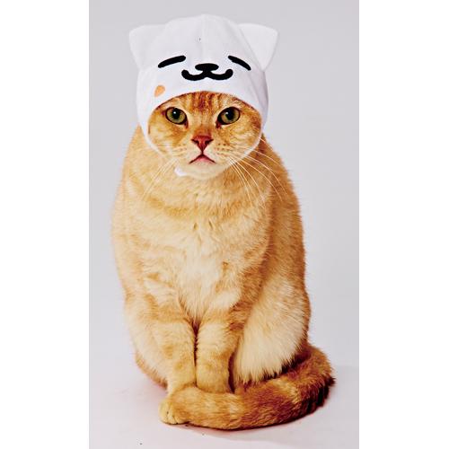 [ペティオ]Petio ねこあつめ 変身ほっかむり まんぞくさん ねこのかぶりもの キャットウエア コスプレ ハロウィン 猫服 4903588252532 #w-149591