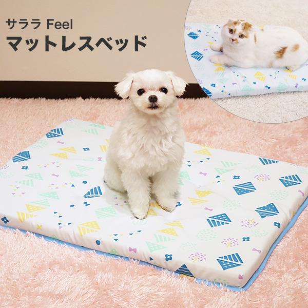 【あす楽】[ドギーマン]DoggyMan 抜け毛が付きにくい サララfeel マットレスベッド ファンシーポップ 撥水加工付き 犬猫用 4976555937022 #w-152021