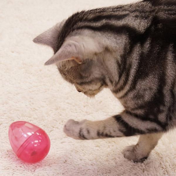 [キャティーマン]CattyMan じゃれ猫 おいしく遊ぼーる 猫用おもちゃ 4976555843545 #w-152605