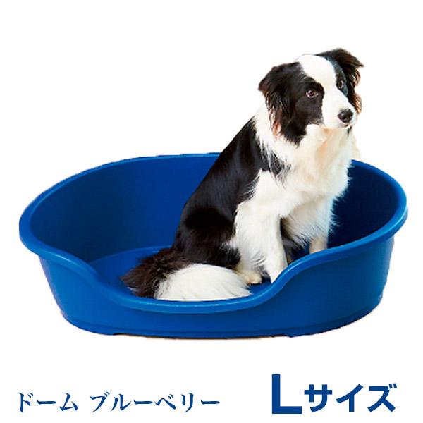 moderna products nv ドーム Lサイズ ブルーベリー ベルギー製 ベッド オーエフティー 4571210458623 #w-156299-00-00