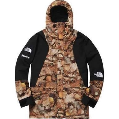 【Supreme】 シュプリーム 16AW The North Face Leaves Mountain Light Jacket M【中古】