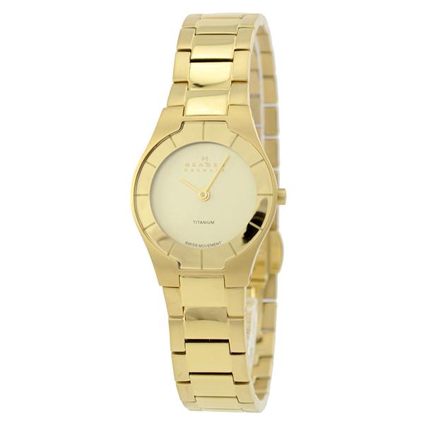 スカーゲン SKAGEN SKW2105 여성 시계 시계