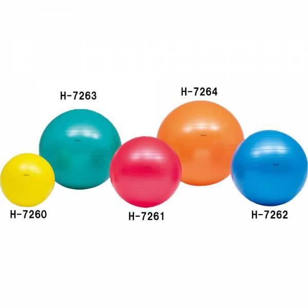 キャンペーンもお見逃しなく トーエイライト 豪華な ボディーボール55 H7261