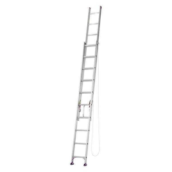 【メーカー直送】 アルミ二連はしご6.0m CX60DE アルインコ