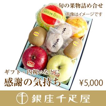 [送料込み] 【感謝の気持ち】 [内祝い] [ギフト] 銀座千疋屋特選 季節の果物詰合せ