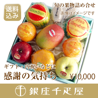 季節の果物詰合せ [送料込み] 銀座千疋屋特選 [内祝い] 【感謝の気持ち】 [ギフト]