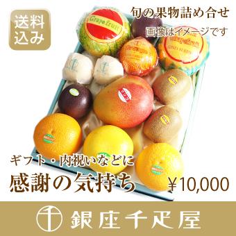 [送料込み] [ギフト] 季節の果物詰合せ [内祝い] 【感謝の気持ち】 銀座千疋屋特選