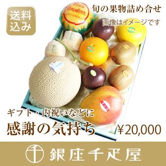 銀座千疋屋特選 [内祝い] 季節の果物詰合せ [ギフト] [送料込み] 【感謝の気持ち】