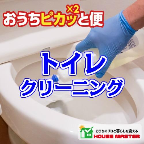 【送料無料】トイレクリーニング 手入れ手洗いクリーニング 洋式トイレ 和式トイレ 黒ずみ 尿石 プロのお掃除 家事代行