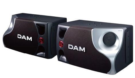スピーカー 第一興商 DAM DDS-80 【新品】 【送料無料】 【メーカー保証】