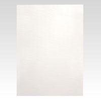 (まとめ) カラーボード アルテ ニューカラーボード ホワイト BP-5CB-A2-WH 4963783201124 ●A2判●縦594×横420mm 1枚【20×セット】