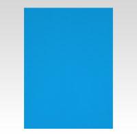 (まとめ) カラーボード アルテ ニューカラーボード ブルー BP-5CB-A2-BL 4963783211123 ●A2判●縦594×横420mm 1枚【20×セット】