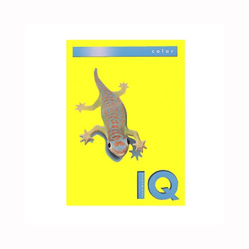 (まとめ) コピー用紙(カラー用紙) 伊東屋 バイオトップカラー カナリーイエロー BT512 9003974402918 1冊【5×セット】