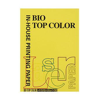 (まとめ) コピー用紙(カラー用紙) 伊東屋 バイオトップカラー マスタード BT129 4944257011296 1冊【20×セット】