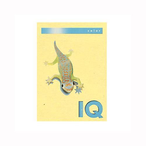 (まとめ) コピー用紙(カラー用紙) 伊東屋 バイオトップカラー イエロー BT703 9003974406725 1冊【5×セット】