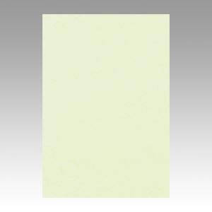 【スーパーセールでポイント最大44倍】(まとめ) 色画用紙 文運堂 ニューカラーR メロン 8NCR-133 4954022681333 1冊【10×セット】