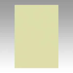【スーパーセールでポイント最大44倍】(まとめ) 色画用紙 文運堂 ニューカラーR もえぎ 8NCR-124 4954022681241 1冊【10×セット】