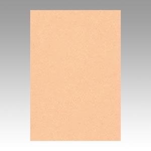 【スーパーセールでポイント最大44倍】(まとめ) 色画用紙 文運堂 ニューカラーR 薄橙 8NCR-103 4954022681036 1冊【10×セット】