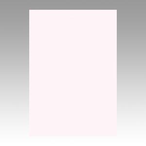 (まとめ) 色画用紙 文運堂 ニューカラーR ピンク 8NCR-135 4954022681357 1冊【10×セット】
