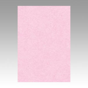 【スーパーセールでポイント最大44倍】(まとめ) 色画用紙 文運堂 ニューカラーR 桜 8NCR-218 4954022682187 1冊【10×セット】