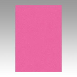 【スーパーセールでポイント最大44倍】(まとめ) 色画用紙 文運堂 ニューカラーR 濃桃色 8NCR-232 4954022682323 1冊【10×セット】