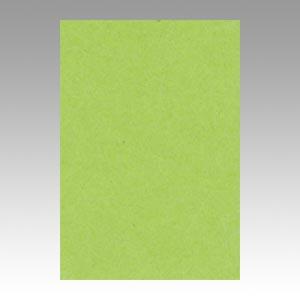 【スーパーセールでポイント最大44倍】(まとめ) 色画用紙 文運堂 ニューカラーR 黄緑 8NCR-212 4954022682125 1冊【10×セット】