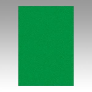 【スーパーセールでポイント最大44倍】(まとめ) 色画用紙 文運堂 ニューカラーR 緑 8NCR-321 4954022683214 1冊【10×セット】