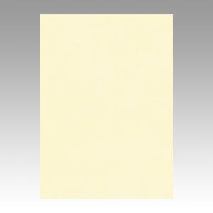 (まとめ) 色画用紙 文運堂 ニューカラーR ウスクリーム 4NCR-112 4954022641122  1冊【5×セット】:インテリアの壱番館
