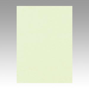 【スーパーセールでポイント最大44倍】(まとめ) 色画用紙 文運堂 ニューカラーR メロン 4NCR-133 4954022641337 1冊【5×セット】