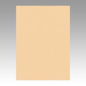 (まとめ) 色画用紙 文運堂 ニューカラーR シラ茶 4NCR-111 4954022641115 1冊【5×セット】