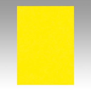 【スーパーセールでポイント最大44倍】(まとめ) 色画用紙 文運堂 ニューカラーR レモン 4NCR-319 4954022643195 1冊【5×セット】
