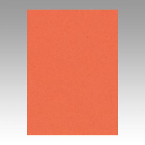 【スーパーセールでポイント最大44倍】(まとめ) 色画用紙 文運堂 ニューカラーR 橙 4NCR-213 4954022642136 1冊【5×セット】