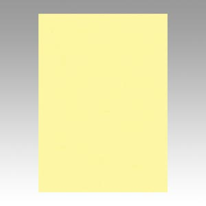 【スーパーセールでポイント最大44倍】(まとめ) 色画用紙 文運堂 ニューカラーR ライトイエロー 4NCR-134 4954022641344 1冊【5×セット】