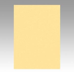 (まとめ) 色画用紙 文運堂 ニューカラーR コイクリーム 4NCR-122 4954022641221 1冊【5×セット】