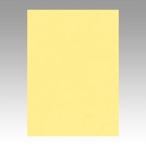 【スーパーセールでポイント最大44倍】(まとめ) 色画用紙 文運堂 ニューカラーR クリーム 4NCR-101 4954022641016 1冊【5×セット】