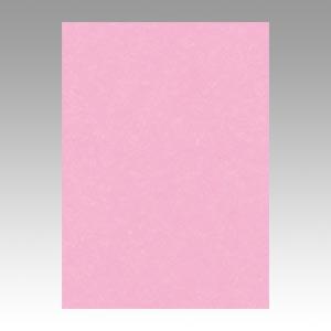 【スーパーセールでポイント最大44倍】(まとめ) 色画用紙 文運堂 ニューカラーR ときいろ 4NCR-234 4954022642341 1冊【5×セット】