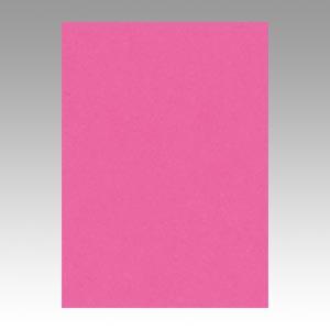 (まとめ) 色画用紙 文運堂 ニューカラーR 濃桃色 4NCR-232 4954022642327 1冊【5×セット】