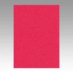【スーパーセールでポイント最大44倍】(まとめ) 色画用紙 文運堂 ニューカラーR 牡丹色 4NCR-325 4954022643256 1冊【5×セット】