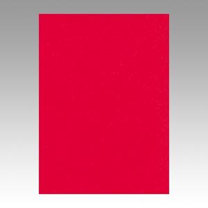 【スーパーセールでポイント最大44倍】(まとめ) 色画用紙 文運堂 ニューカラーR 赤 4NCR-317 4954022643171 1冊【5×セット】
