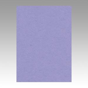 【スーパーセールでポイント最大44倍】(まとめ) 色画用紙 文運堂 ニューカラーR 藤紫色 4NCR-217 4954022642174 1冊【5×セット】
